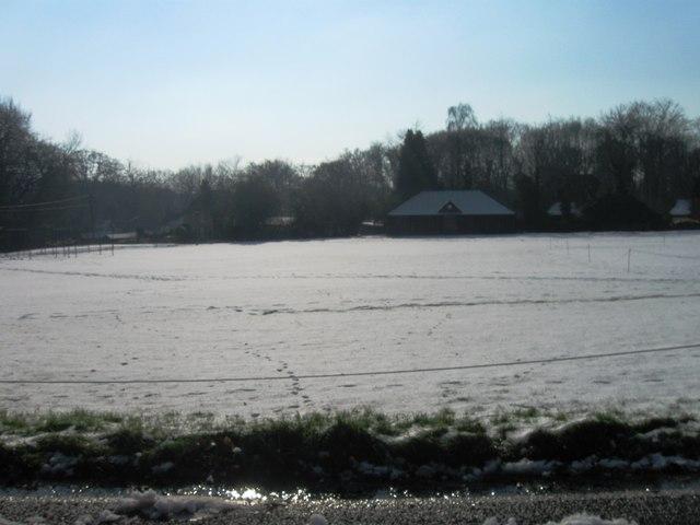 Hambledon Cricket Green