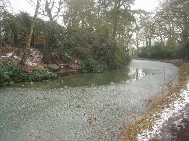 Curve in Basingstoke canal, Fleet