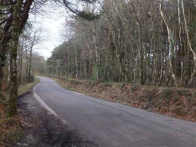Luscombe Hill