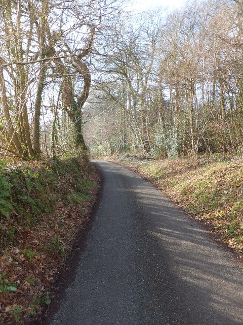 Greenway Lane at the end of Tower Plantation (on right)