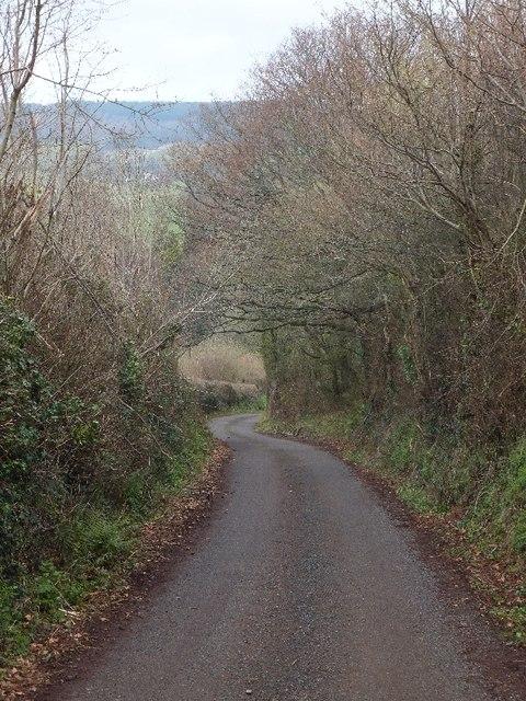 Looking downhill near Broomhouse Farm