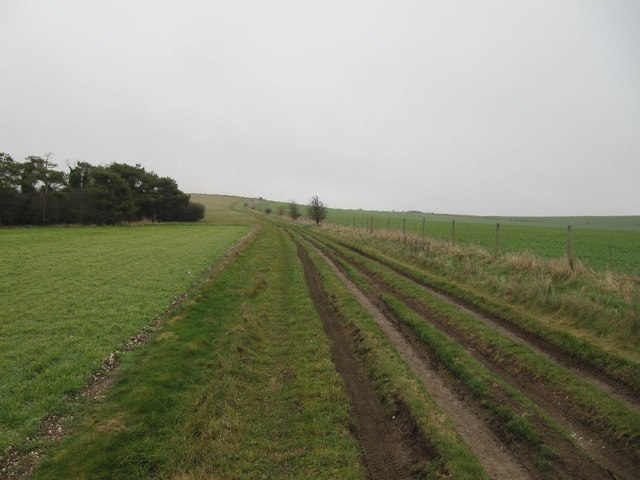 Track from Lowbury Hill