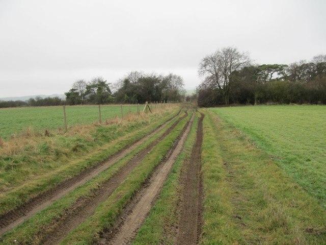Nearing the Ridgeway
