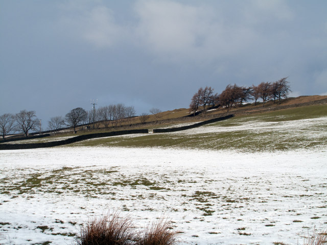 Partly snowed field north-east of Middleton-in-Teesdale