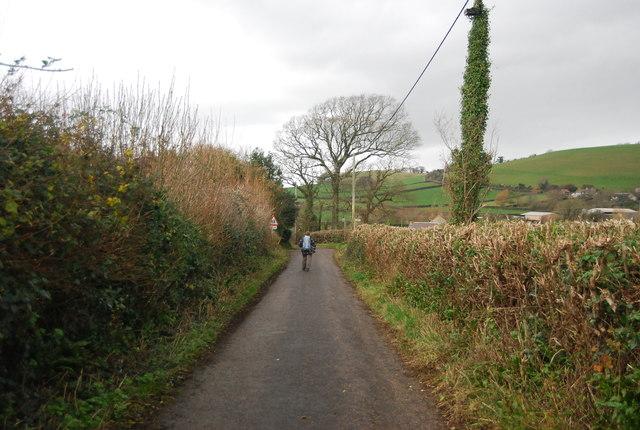 Walker on School House Lane