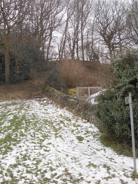 Footpath - Avondale Road