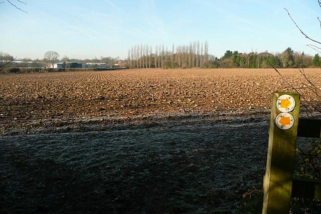 Arable land at Raans Farm