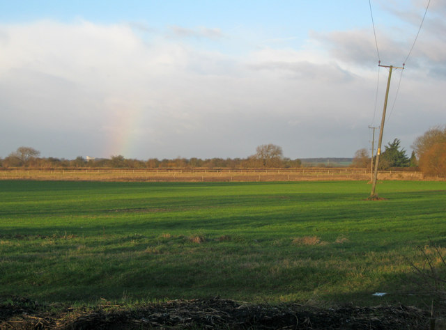 Meadow north of Winthorpe