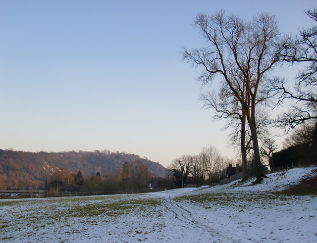 Norbury Park: the southernmost corner, after snow