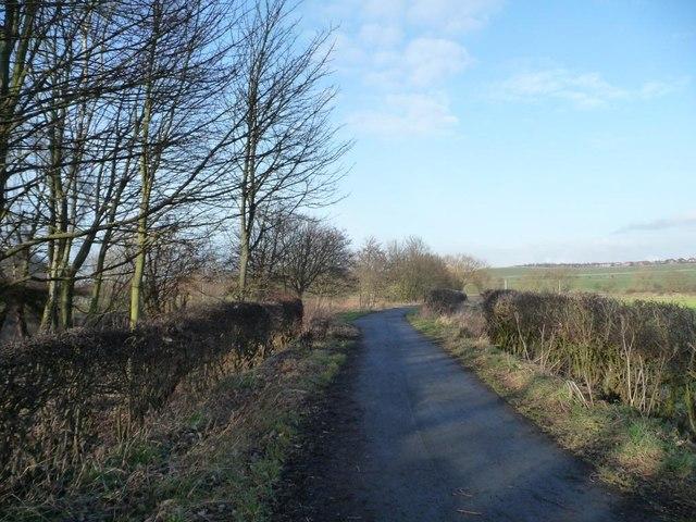 Weardale Way, near Shincliffe Bridge