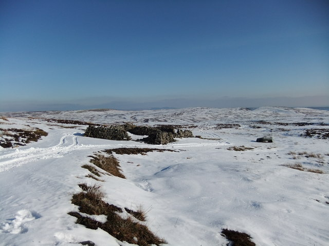 Sheepfold at the end of the track on Lune Moor