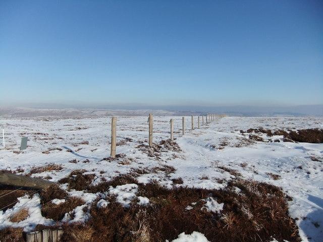 Fence near Bink Moss