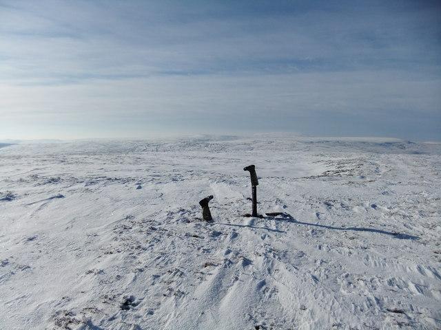 Summit of Bink Moss