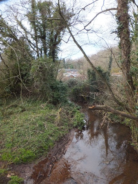 Dawlish Water at Kennel Court