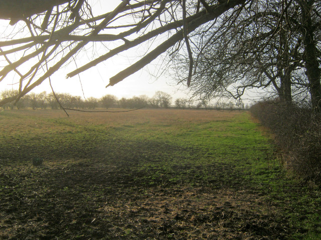 Small meadow east of Holme