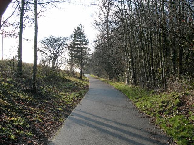 Footpath alongside the Birchwood Expressway