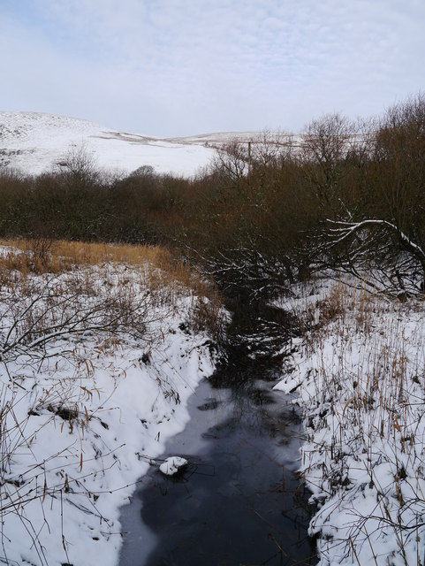 Ditch In The Ettrick Marshes