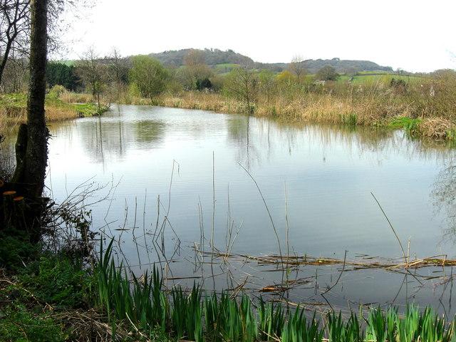 Fishing lake at Revels farm