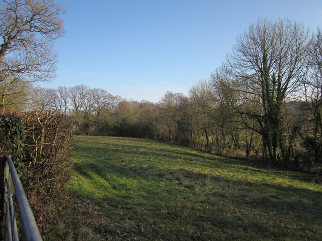 Pasture beside Blackwater Road