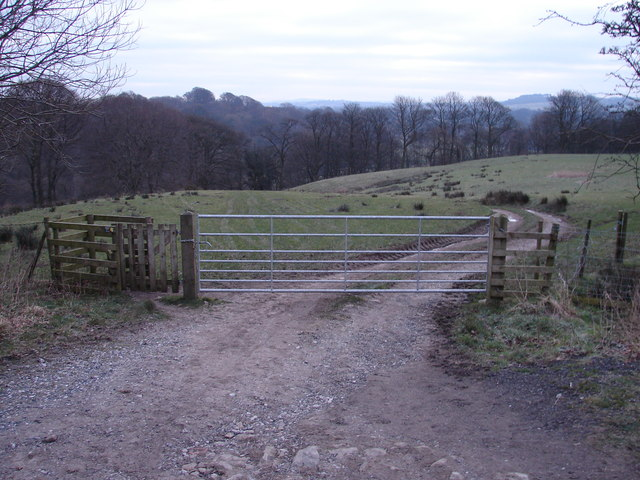 Gate with stile