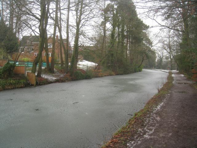 Frozen stretch of the Basingstoke canal