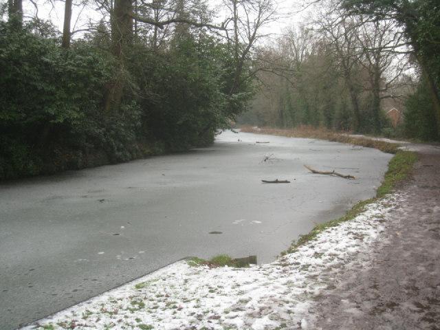 Frozen Basingstoke canal