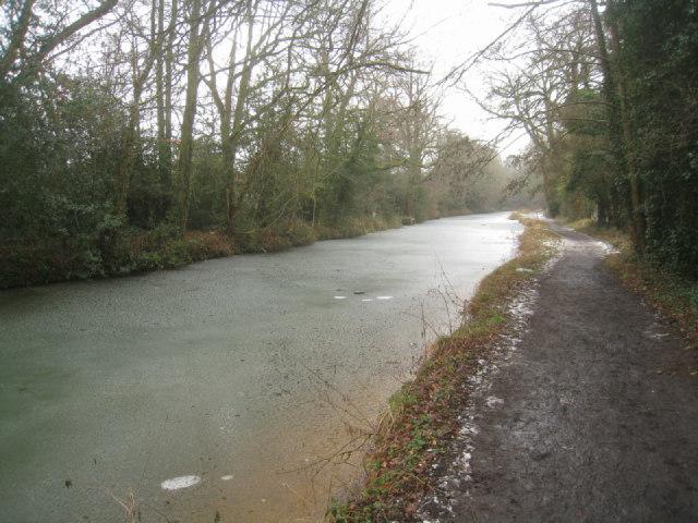Basingstoke canal near Crookham village