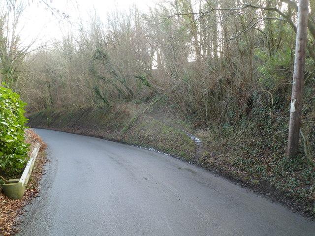 Track into woods near Llandegfedd Reservoir