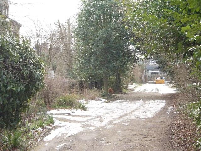 Woodside Avenue - off Bingley Road