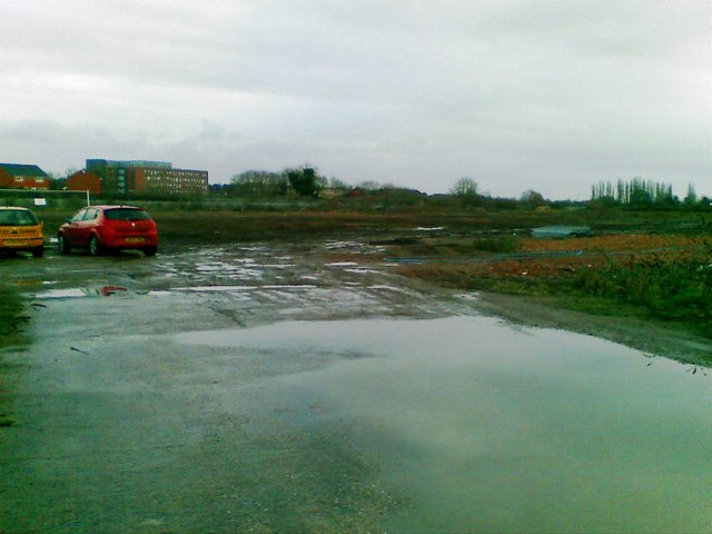 Cleared site