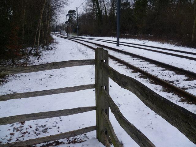 Tramlink in winter near Coombe Lane