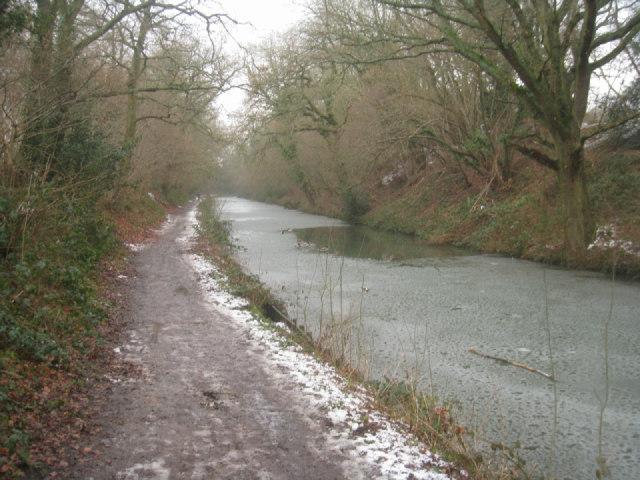 Basingstoke canal in a slight cutting