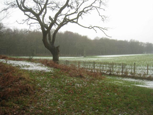 View towards Zephon Common