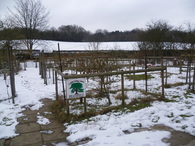 Croydon Ecology Centre at Heathfield in the snow