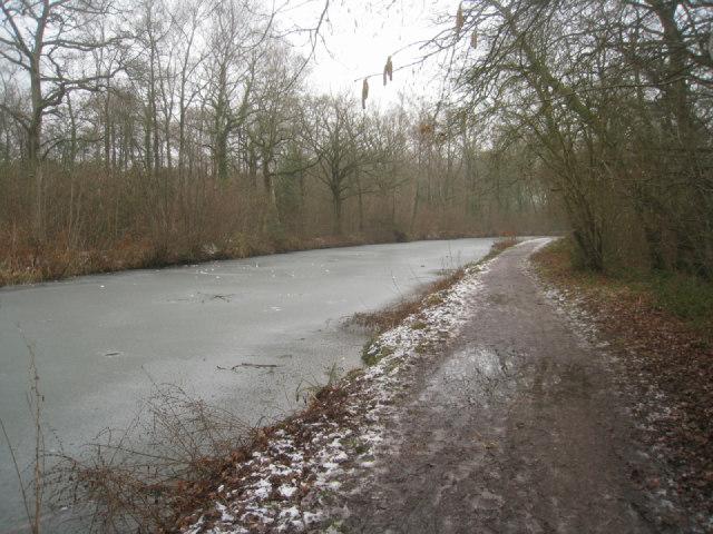 Basingstoke canal / Zebon Copse