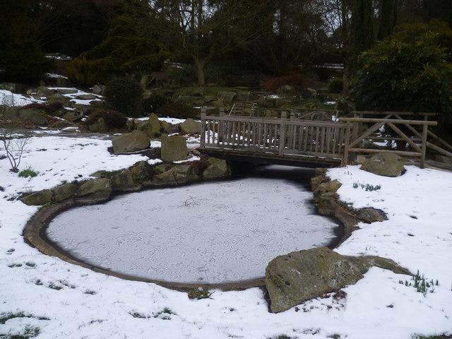 The rock garden at Heathfield