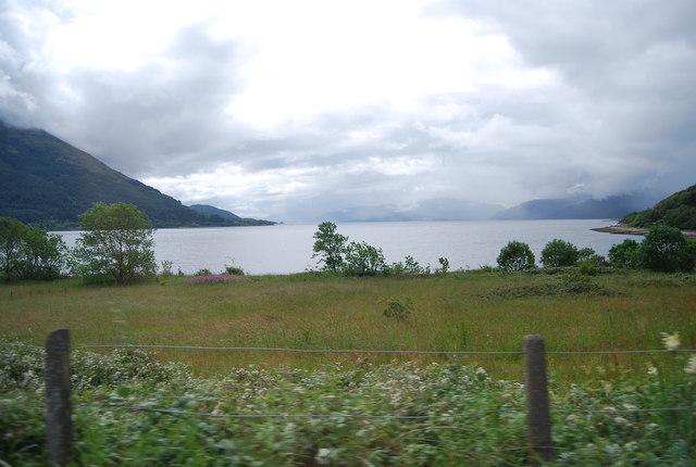 Rough Grazing by Loch Linnhe