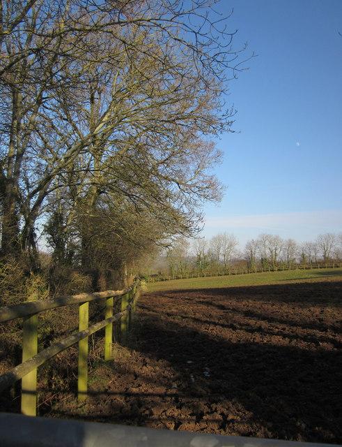 Field edge above Hillmoor
