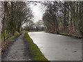 SJ9586 : Macclesfield Canal, Windlehurst by David Dixon