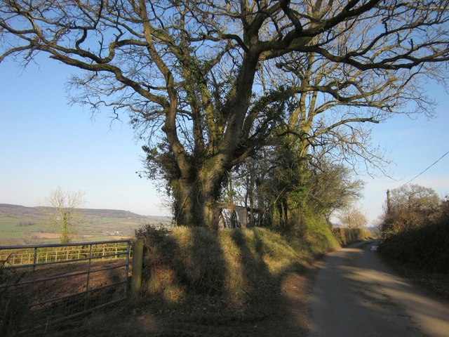 Lane on Hackpen Hill