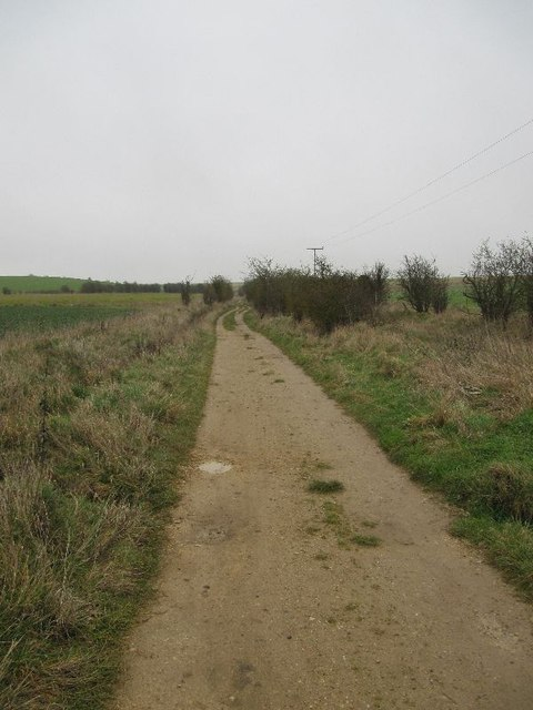 Towards Roden Down
