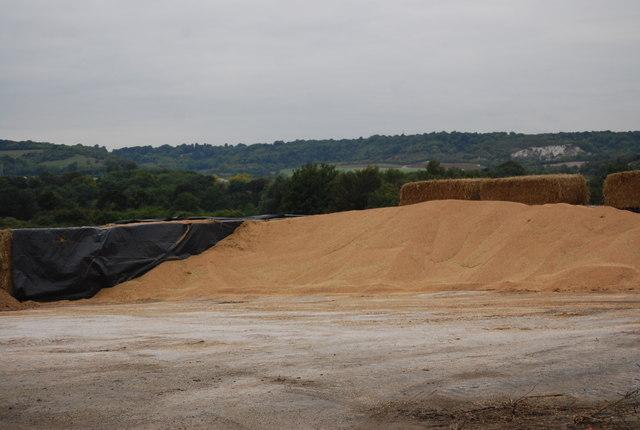 A grain mountain!