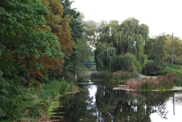 Bramford sluice and weeping willow
