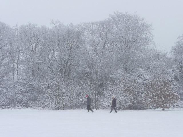 Walkers in Trent Park, London  N14