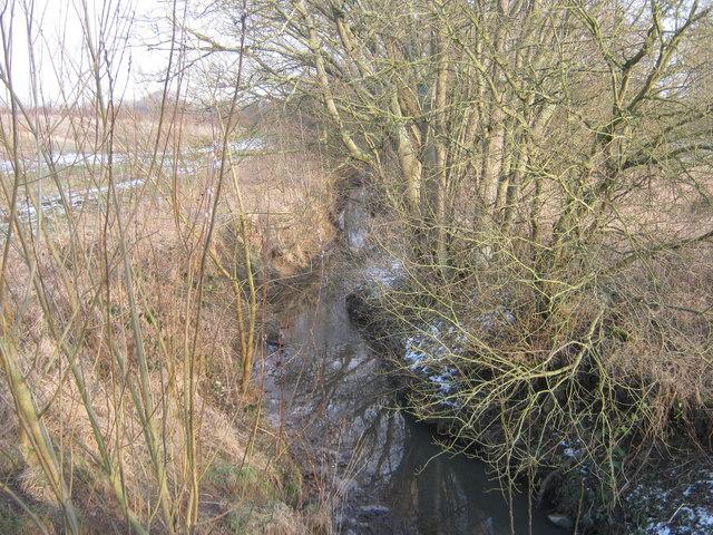 Coatham Beck in Coatham Wood