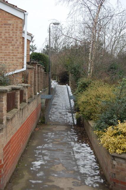Path Bryony to Field Lane