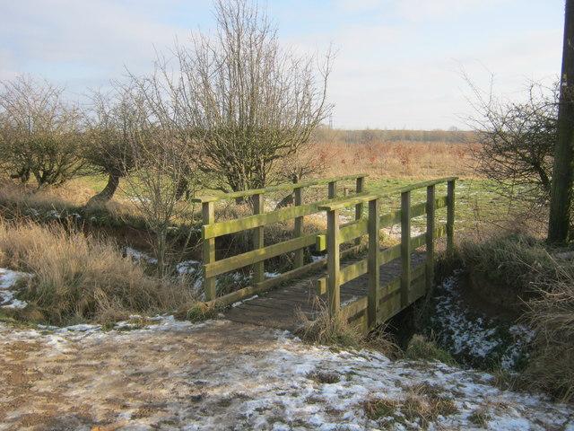 Footbridge over ditch in Coatham Wood
