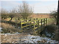NZ3916 : Footbridge over ditch in Coatham Wood by peter robinson