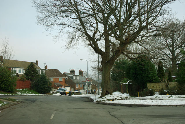 Stone Cross Road meets Walshes Road