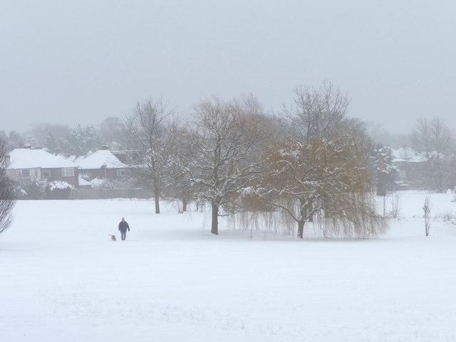 Walking the Dog, Oakwood Park, London N14